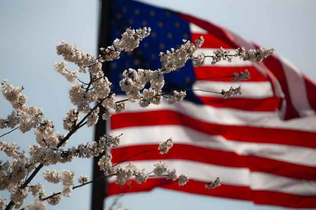 US Flag 3